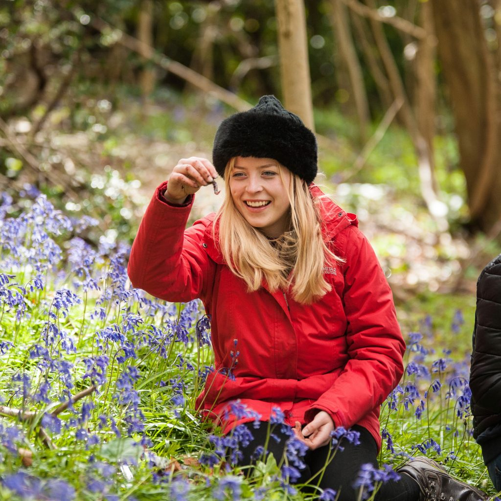Biology student with furry hat on in a field of bluebells looking at a research sample while on field trip.