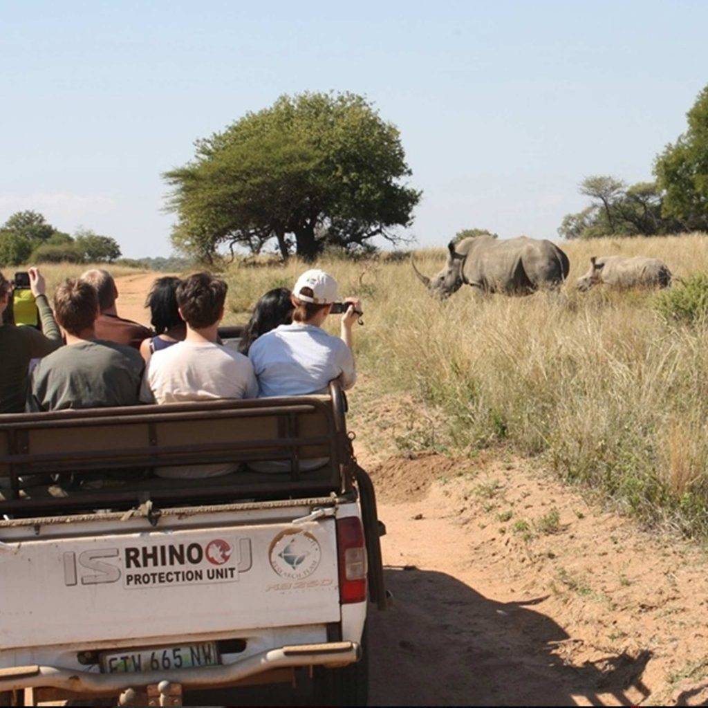 Students on a safari trip viewing Rhinos in Africa