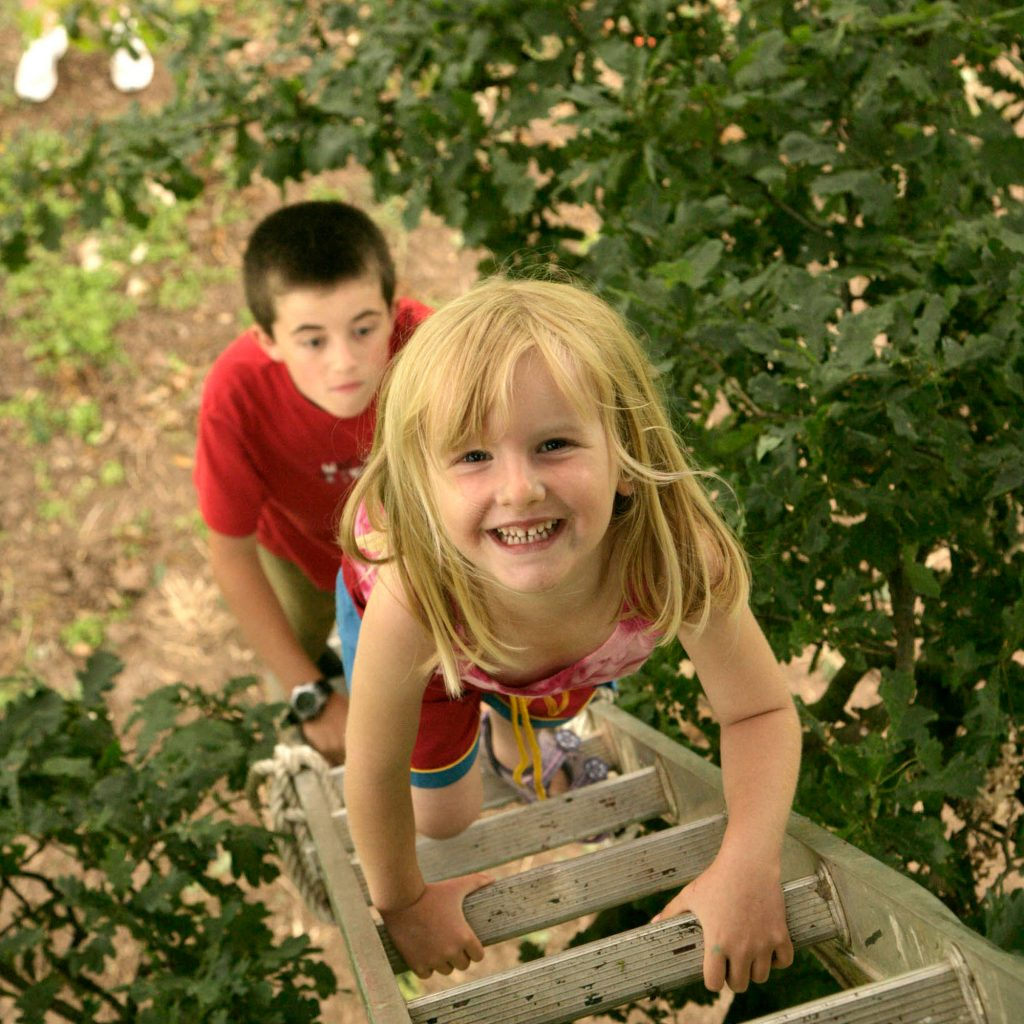Children climbing up ladder towards treehouse smiling